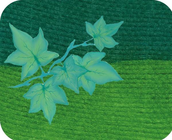Split Cake Ivy , 6ml