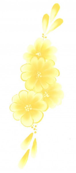 Split Cake Daisy, 6ml