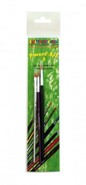 Profi Pinsel-Set V
