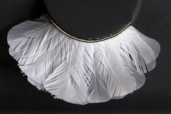 Wimpern, Weiße Federn